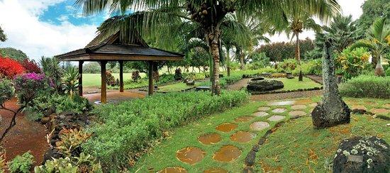 Kukuiolono Golf Course : Kukuiolono Japanese garden
