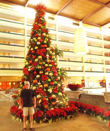 Christmas Tree In The Desert.Six Story Beautiful Christmas Tree In The Lobby Picture