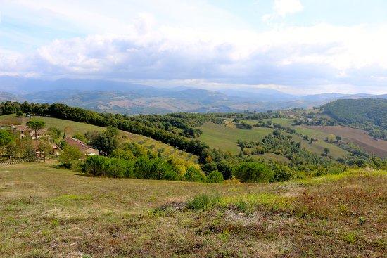 Villa Pian Di Cascina: The views!