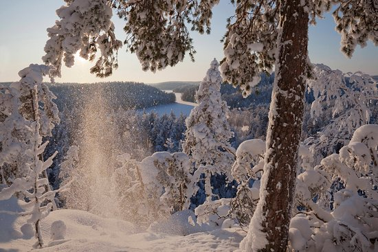 Kymenlaakso, ฟินแลนด์: Repovesi winter
