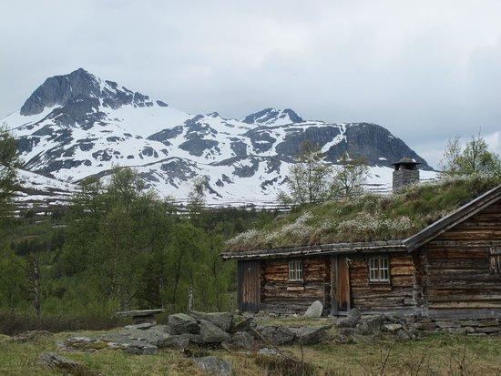Rindal Municipality, النرويج: Kulturhistorie iTrollheimen