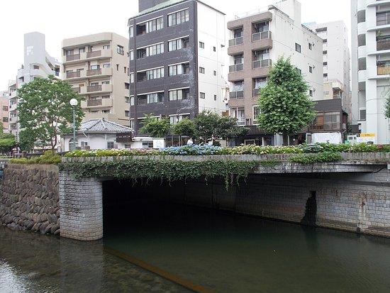 Nagasaki International Hostel Akari: Some flowers above the river & not far from the Hostel