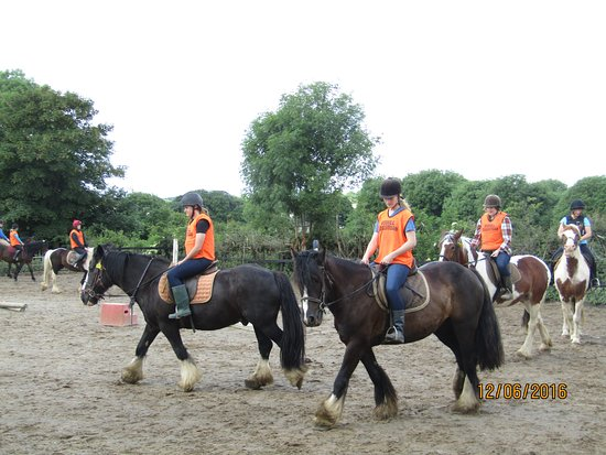 Home stay with boskill caherconlish Co, Limerick Ireland.v94 yv83  www.limerickhorseriding.com