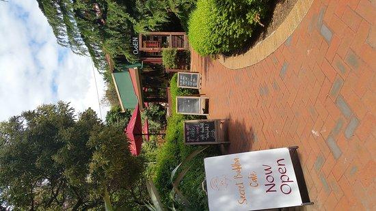 Secret Buddha Cafe: 20161129_122339_large.jpg