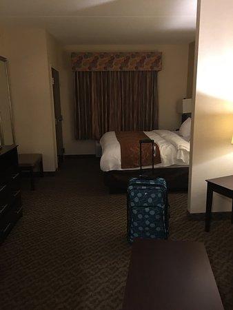 Comfort Suites Cicero - Syracuse North: photo0.jpg