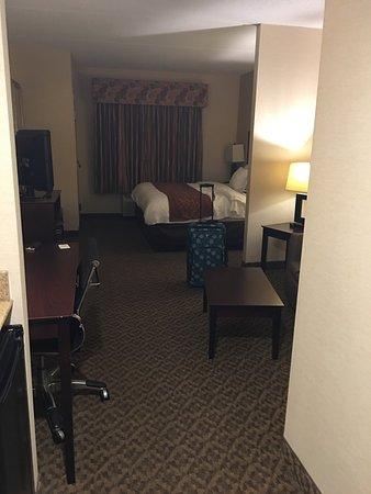 Comfort Suites Cicero - Syracuse North: photo2.jpg