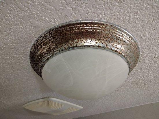 Bathroom Lights Orlando rusted bathroom light - picture of radisson hotel orlando - lake