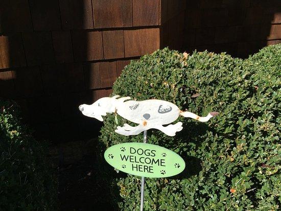 green ROCKS inn: 'nuf said:)