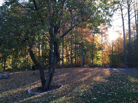 Ridgefield, CT: Fall