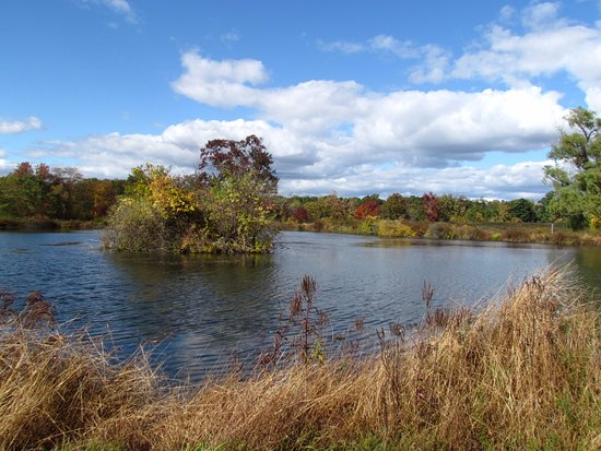 Cornwall, NY: Goose Pond on a beautiful Fall day