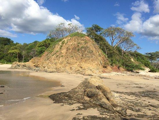 Playa Grande, Costa Rica: Este escenario es muy hermoso!