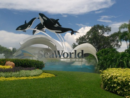 Universal Orlando Park Vip Tour Info