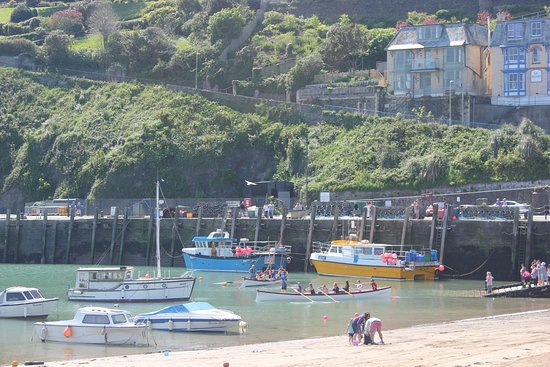 Ilfracombe Picture