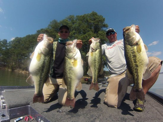 Guntersville Bass Guides: getlstd_property_photo