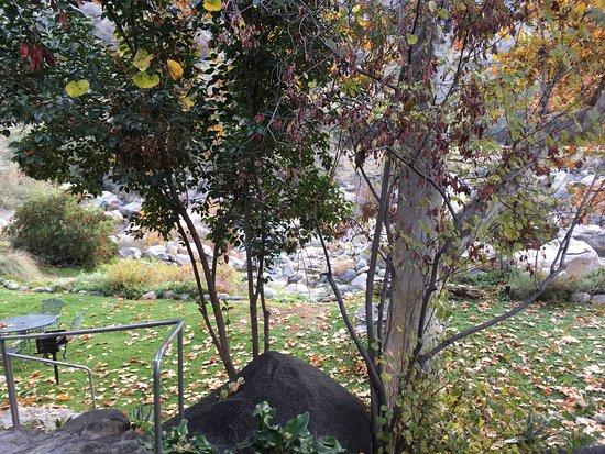 Buckeye Tree Lodge: photo0.jpg