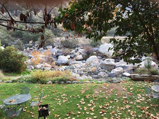 Buckeye Tree Lodge: photo1.jpg