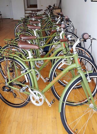 CBUS Bike Tours
