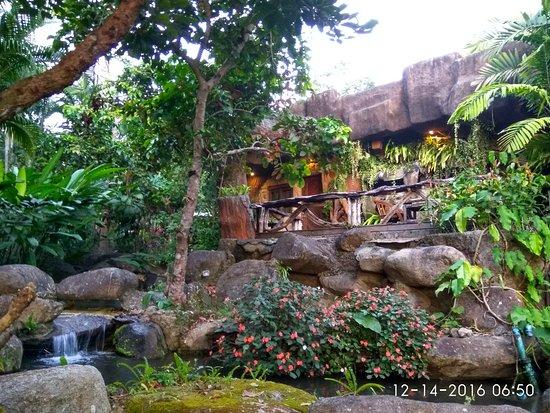 Bura Resort: IMG_20161214_065034_HDR_large.jpg