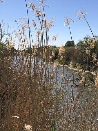 Soetdoring Nature Reserve