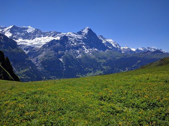 Grindelwald, سويسرا: بالطريق للبحيرة