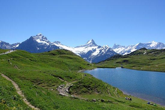 Grindelwald, Switzerland: خيال