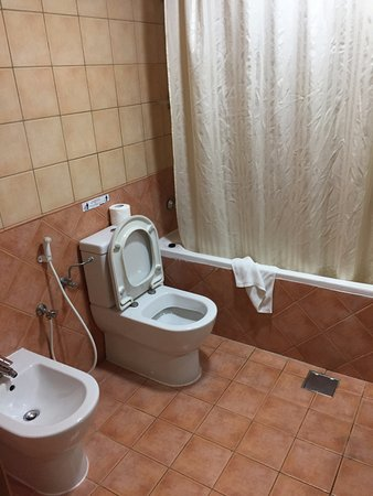 Rose Garden Hotel Apartments - Bur Dubai: bathroom