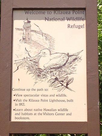 Kilauea, Hawái: парк какой -то