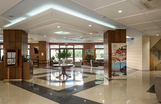 Bio Suites Hotel: Lounge