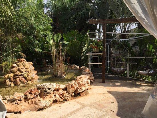 Kiryat Gat, Israel: Relaxing atmosphere