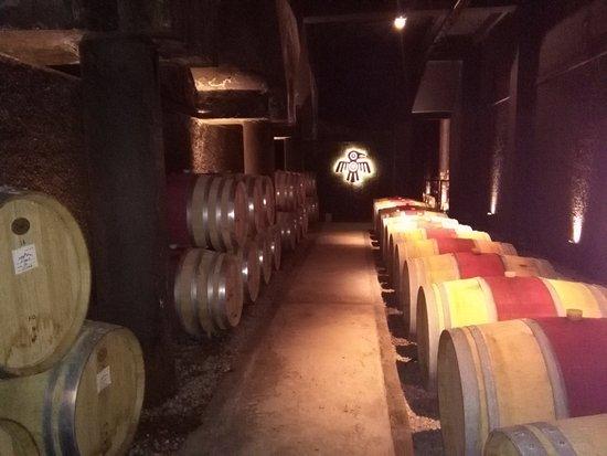 Kaiken Winery: Barriles