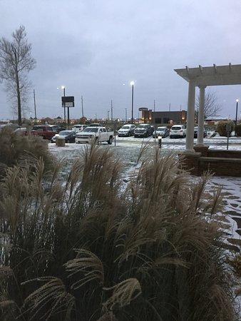 Hilton Garden Inn Indianapolis South/Greenwood Photo