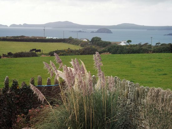 Walled garden and Newgale Beah beyond