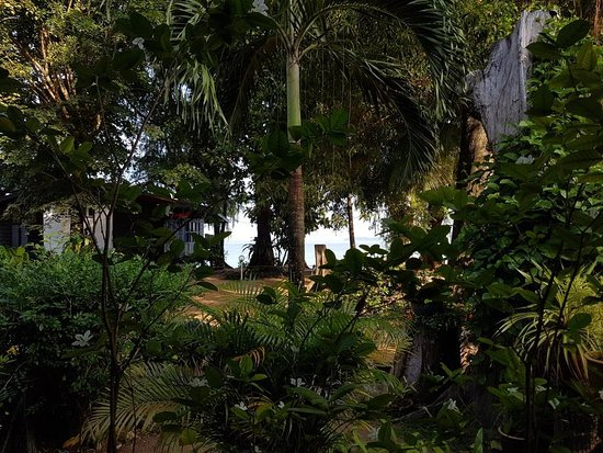 Swiss Cottage Tioman: View from the reception lounge/dining area