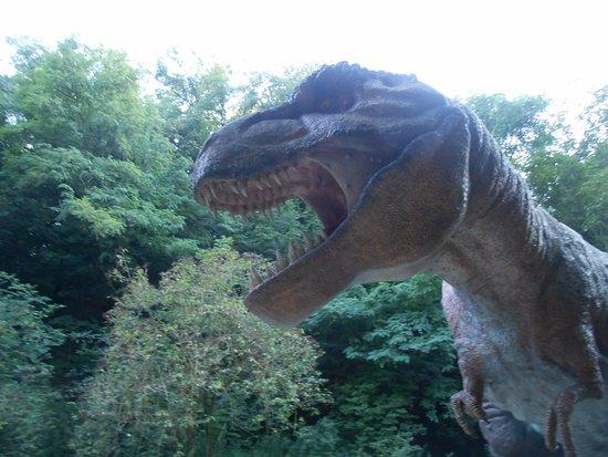 DinoPark Bratislava: DINOPARK