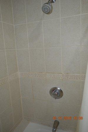 هوتل داريو: La ducha