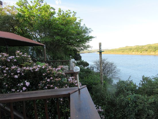 Dungbeetle River Lodge: Deck view overlooks the river