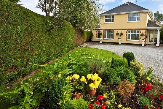 Aspen house b b updated 2018 reviews adare ireland for Aspen house
