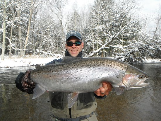 Baldwin, MI: West Michigan Steelhead