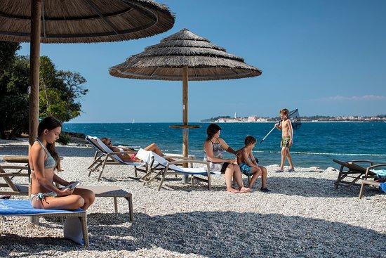discount shop sale usa online shop Valamar Club Tamaris Beach - Picture of Valamar Tamaris ...