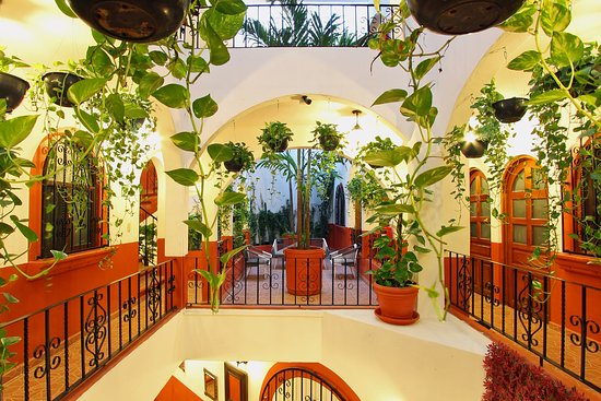El Patio Hotel U0026 Suites   UPDATED 2017 Prices U0026 Reviews (Riviera Maya/Playa  Del Carmen, Mexico)   TripAdvisor