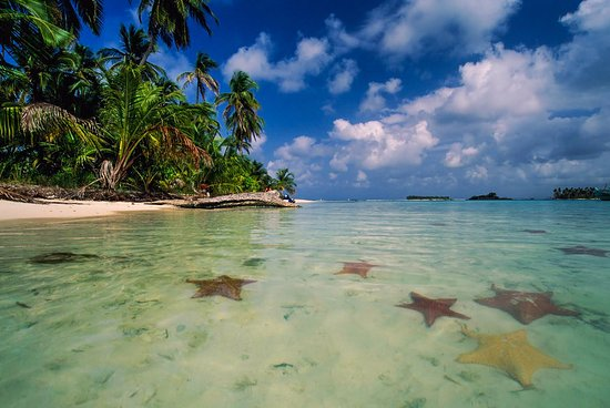 Tripadvisor Bocas Del Toro Panama: Picture Of Hello Travel Panama, Bocas Del