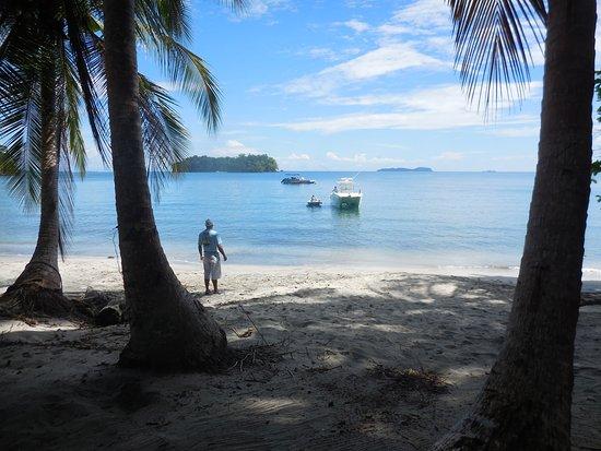 Golfo de Chiriqui National Park, Panama: The beach & the TOP Cat