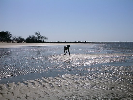 Georgetown, SC: Wide beaches for exploring