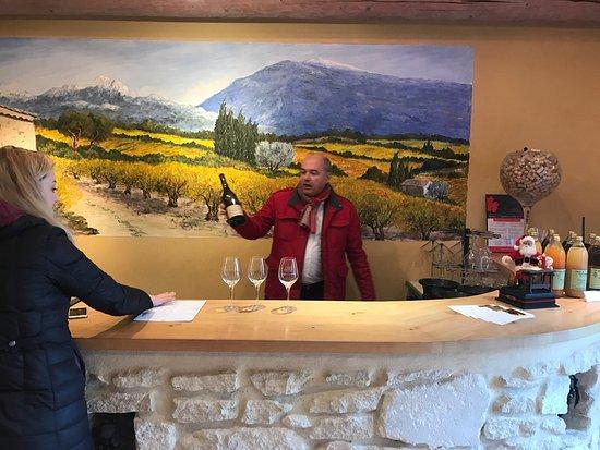 阿維尼翁葡萄酒之旅
