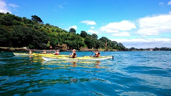 Fergs Kayaks Auckland: Join us on our iconic Rangitoto Volcano Adventure Tour