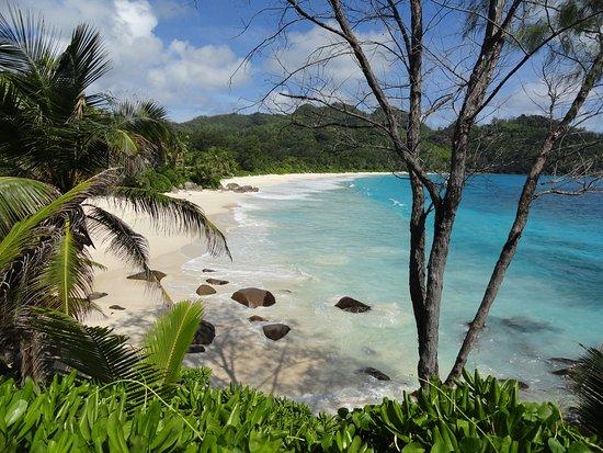 Anse Intendance: пляж
