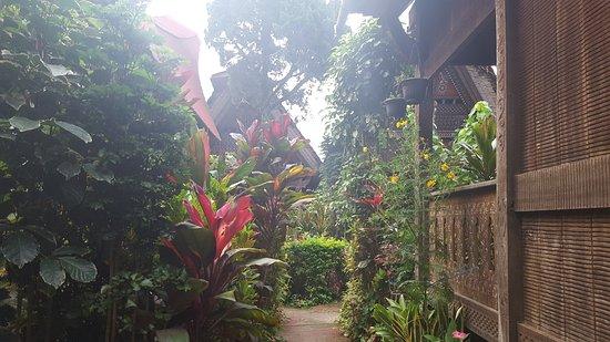 Duta 88 Cottages: jardin