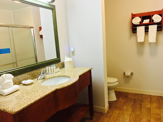 Hampton Inn Garden City: Standard Bathroom