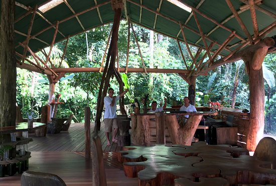 Danta Corcovado Lodge: Danta's dining room and bar area -- with custom furniture