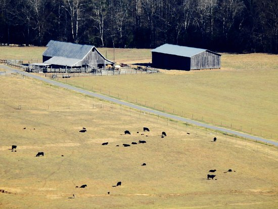 Townsend, Τενεσί: Foothills Parkway - zoom of a farm at the bottom